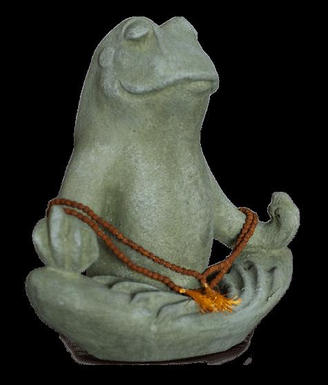 prayer_frog